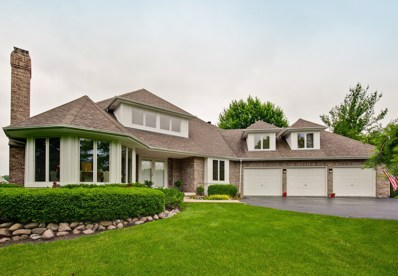 25905 N Tahoe Court, Long Grove, IL 60060 - #: 10007639