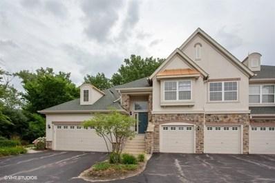 218 Shadow Creek Circle, Vernon Hills, IL 60061 - MLS#: 10007939