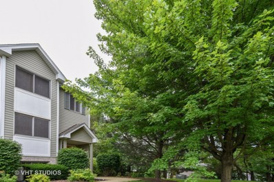 411 E Willow Street UNIT 411, Elburn, IL 60119 - MLS#: 10008017