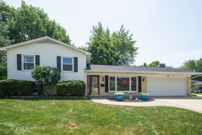 22 Red Haw Lane, Lake Zurich, IL 60047 - #: 10008422