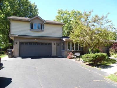 14115 W August Zupec Drive, Wadsworth, IL 60083 - #: 10008816