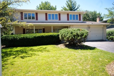 6530 Dunham Road, Downers Grove, IL 60516 - #: 10008981