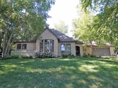 31 Birchwood Lane, St. Anne, IL 60964 - #: 10009776