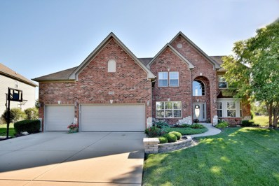 26810 Basswood Circle, Plainfield, IL 60585 - #: 10009782