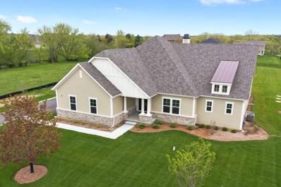 24413 N. Blue Aster Lane, Lake Barrington, IL 60010 - #: 10009984