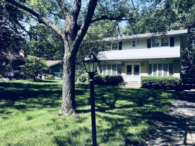 360 N Shady Lane, Elmhurst, IL 60126 - MLS#: 10010011
