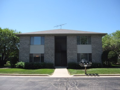 420 WESTWOOD Court UNIT D, Crystal Lake, IL 60014 - MLS#: 10010046