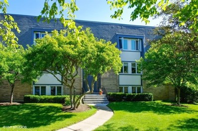 2021 AMMER RIDGE Court UNIT 201, Glenview, IL 60025 - MLS#: 10010669