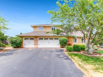 14848 Glen Wood Lane, Homer Glen, IL 60491 - MLS#: 10012343