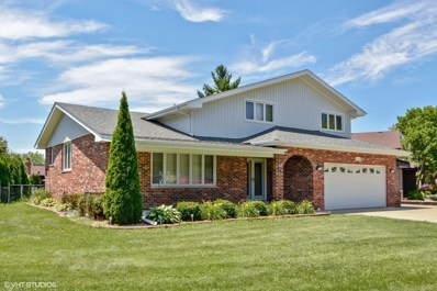 12055 Lake View Drive, Orland Park, IL 60467 - MLS#: 10012376
