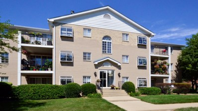 457 Valley Drive UNIT 104, Naperville, IL 60563 - #: 10013118