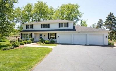 25625 W Timberlake Road, Barrington, IL 60010 - MLS#: 10013449