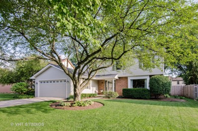 808 Canyon Run Road, Naperville, IL 60565 - MLS#: 10013763