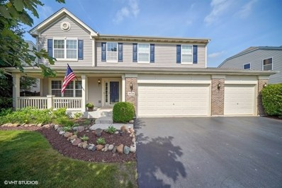 14728 Independence Drive, Plainfield, IL 60544 - #: 10013884