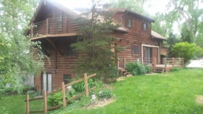 5750 E Muskie Trail, Morris, IL 60450 - #: 10014107