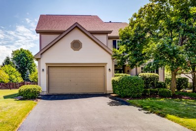 11335 S Marathon Lane, Plainfield, IL 60585 - MLS#: 10015090