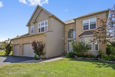 138 Timber Court, Gilberts, IL 60136 - #: 10015190