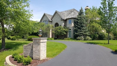 1742 Tanager Way, Long Grove, IL 60047 - MLS#: 10015218