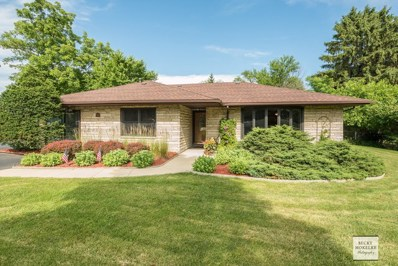 4715 Yackley Avenue, Lisle, IL 60532 - #: 10015795
