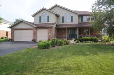 2848 Northwind Drive, New Lenox, IL 60451 - #: 10016502