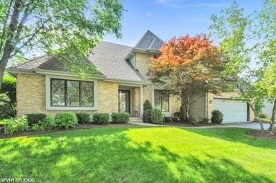 1767 Frost Lane, Naperville, IL 60564 - #: 10017621