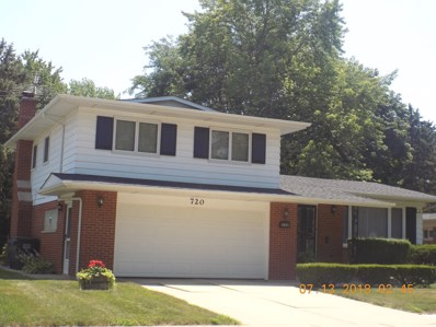 720 W FITZHENRY Court, Glenwood, IL 60425 - MLS#: 10017873