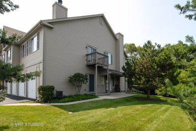 593 Windsor Drive UNIT 1D, Fox Lake, IL 60020 - #: 10018175