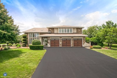 16132 S Windmill Drive, Homer Glen, IL 60491 - MLS#: 10019187