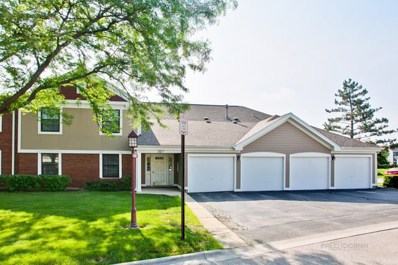 327 Wildberry Court UNIT C2, Schaumburg, IL 60193 - #: 10020779