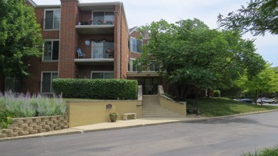815 Leicester Road UNIT 307, Elk Grove Village, IL 60007 - #: 10021053