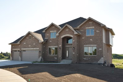22808 Lakeview Estates Boulevard, Frankfort, IL 60423 - #: 10021173
