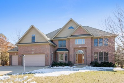 8705 Shade Tree Circle, Lakewood, IL 60014 - #: 10021206
