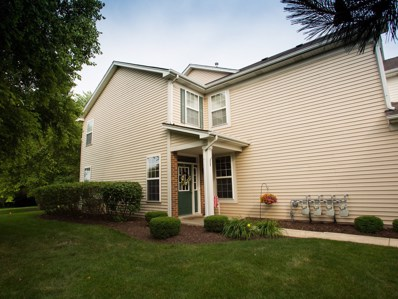 24127 Pear Tree Circle, Plainfield, IL 60585 - MLS#: 10021250