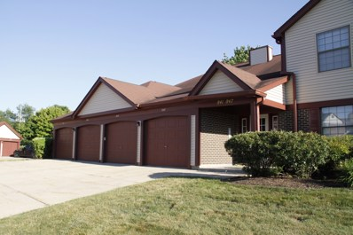 841 Weidner Court SOUTH UNIT A3, Buffalo Grove, IL 60089 - #: 10021266