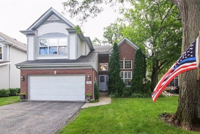 317 Ridge Road, Highland Park, IL 60035 - MLS#: 10021281
