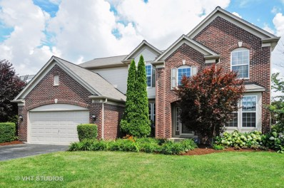 12517 Blue Iris Lane, Plainfield, IL 60585 - MLS#: 10021778