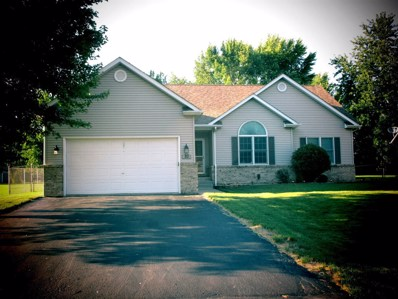 80 Tammy Lane, Lake Holiday, IL 60552 - MLS#: 10021914