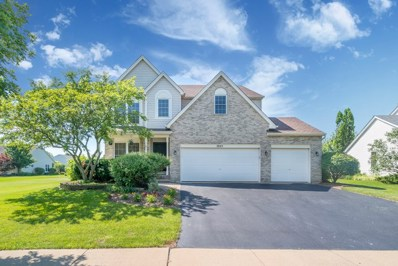 2045 Winding Lakes Drive, Plainfield, IL 60586 - #: 10021995