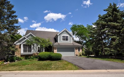 1 Augusta Court, Lake In The Hills, IL 60156 - #: 10022453
