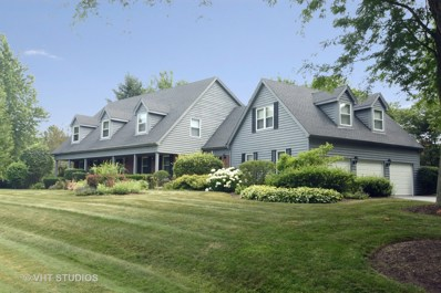 4 Norbert Drive, Hawthorn Woods, IL 60047 - #: 10022796