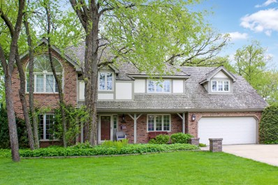 340 Great Oak Court, Naperville, IL 60565 - #: 10022965