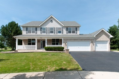 13021 Grande Poplar Circle, Plainfield, IL 60585 - MLS#: 10022981
