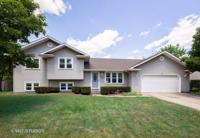 402 PRAIRIE Lane, Wilmington, IL 60481 - #: 10023284