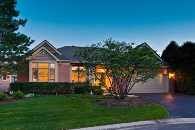 9 Sunvalley Court, Lake In The Hills, IL 60156 - #: 10023377