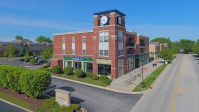 29 Old Frankfort Way UNIT 205, Frankfort, IL 60423 - MLS#: 10023656