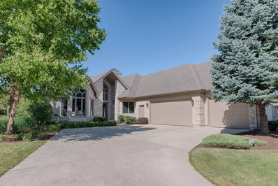 13340 Wood Duck Drive, Plainfield, IL 60585 - MLS#: 10023694