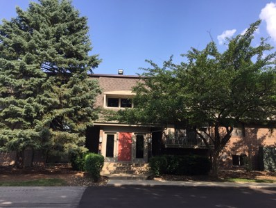 114 E Bailey Road UNIT H, Naperville, IL 60565 - MLS#: 10023906