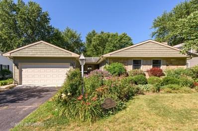 921 Shady Grove Lane, Buffalo Grove, IL 60089 - #: 10024082