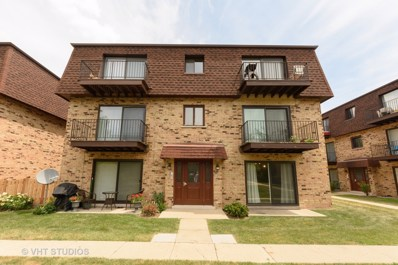 9705 Bianco Terrace UNIT B, Des Plaines, IL 60016 - MLS#: 10024570
