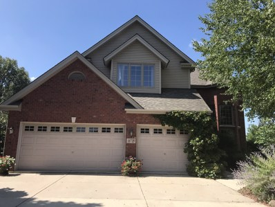 11725 Cooper Way, Orland Park, IL 60467 - MLS#: 10024837